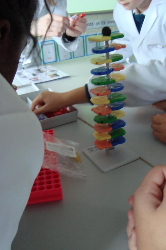 science-making.jpg